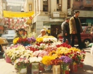 Women Selling Flowers in my Neighborhood of Besiktas, Istanbul